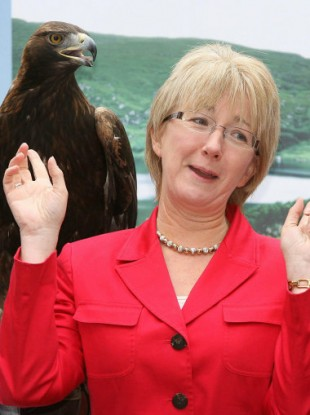 Keeping a bird's eye view of Fianna Fail: Hanafin says she's staying politically active and will run for Dail seat again