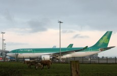 Cork and Shannon airports could be privatised – Varadkar