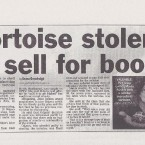 Hartlepool Mail, January 30 2010