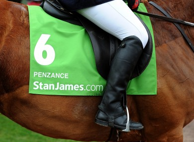 Detail view of StanJames.com branding on Penzance on Centenary Day, during the Cheltenham Festival.