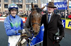 Hurricane Fly triumphs at Punchestown