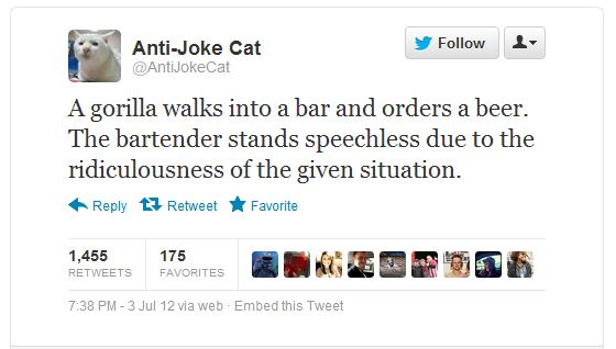 Anti-Joke Cat