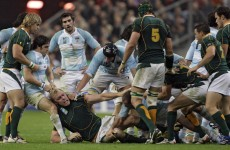 Argentina prepare for Rugby Championship debut against Springboks