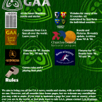 It wasn't until nearly 2000 that the Gaelic Athletic Association took over responsibility for the GAA.ie domain. Before that it was run on an unofficial basis by an enthusiastic fan who wanted to create an online portal for gaelic games.