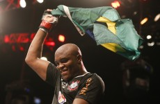 Anderson Silva stops Stephan Bonnar at UFC 153