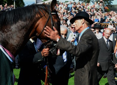 Trainer Henry Cecil greets Frankel after his victory in the Juddmonte International Stakes.