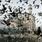 Pigeons fly outside Shah-e-Doshamshera's mosque in Kabul, Afghanistan. (AP Photo/Ahmad Nazar)