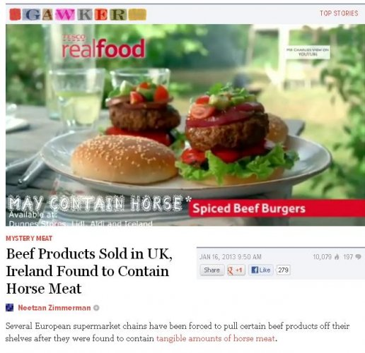 gawker horse meat