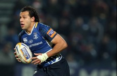 Heineken Cup: Leinster hopeful on returns for Strauss and Nacewa