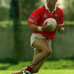  hAilpn won three All-Ireland senior hurling medals as a player along with three Allstar awards. In football he was part of the Cork senior team who won league and Munster titles in 1999 but fell short in the All-Ireland final against Meath.