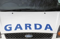 Gardaí arrest two following drugs seizure