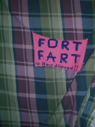 fortfarts