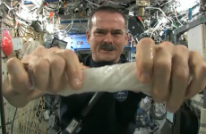 VIDEO: What happens when you wring out a damp cloth in space?