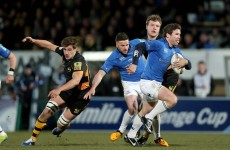 As it happened: Wasps v Leinster, Amlin Challenge Cup quarter-final